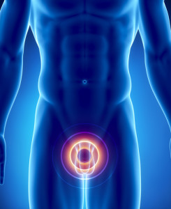 prostata(1)
